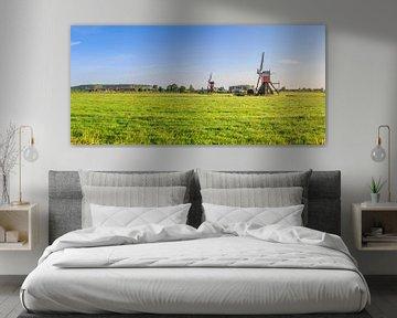 Panorama van weidelandschap met twee wipmolens bij Hoogmade van Henk van den Brink