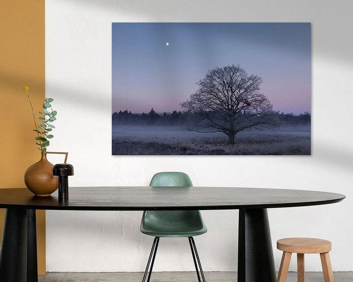 Sfeerimpressie: Bevroren eik onder de maan van Karla Leeftink