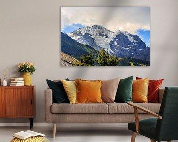 Besneeuwde Jungfrau van Steven Van Aerschot