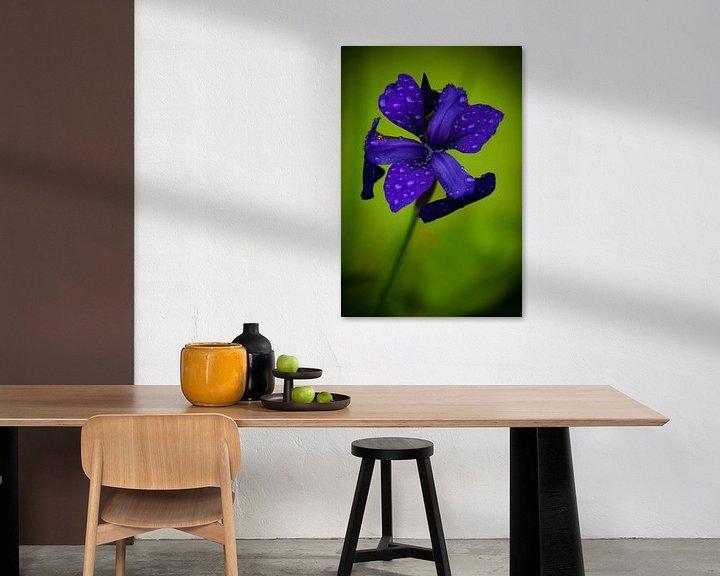 Sfeerimpressie: Paars-blauwe bloem na regenbui van Jesse Meijers