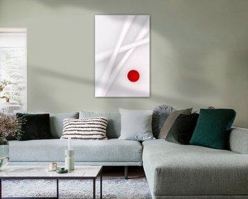 Witte Bamboe van Jörg Hausmann