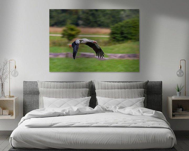 Beispiel: Junger Storch im Flug von Ursula Di Chito