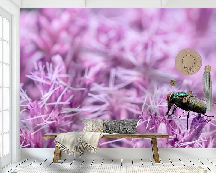 Impression: A macro of a fly on a purple/pink flowerbed sur noeky1980 photography