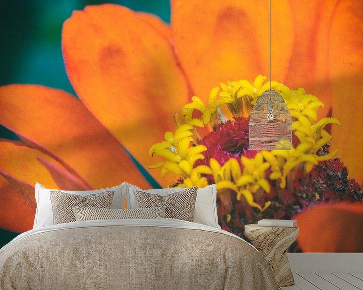 Sfeerimpressie behang: Macro van een oranje bloem van noeky1980 photography