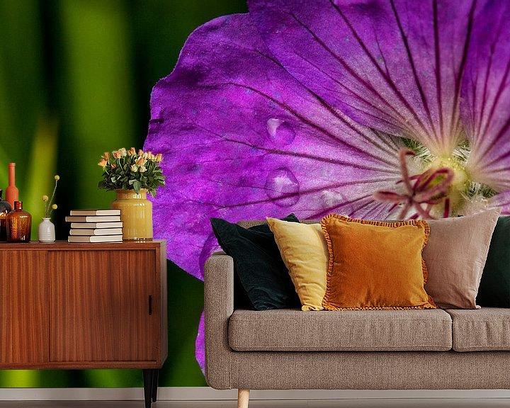 Sfeerimpressie behang: Macro van regendruppels op een paarse bloem van noeky1980 photography