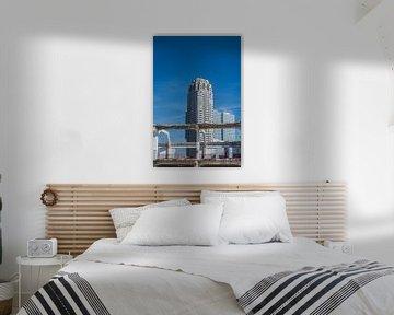 New Orleans Rotterdam von Jasper Scheffers
