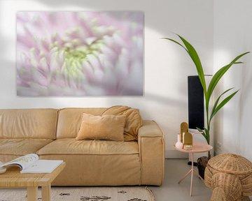 bloem van Ilona Versloot
