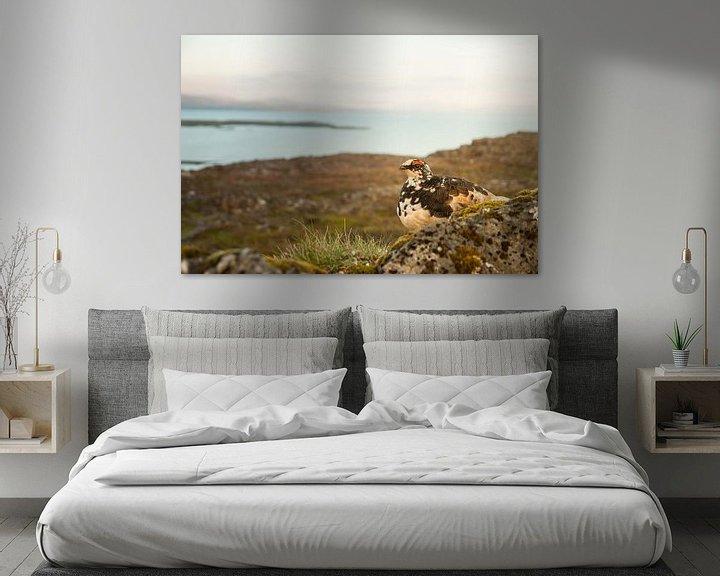 Beispiel: sneeuwhoen, IJsland von Tom Zeegers