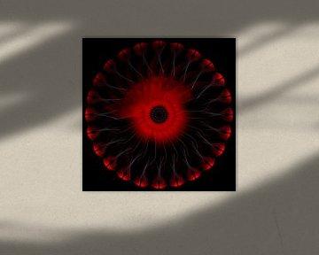 Des Teufels Auge von Max Steinwald