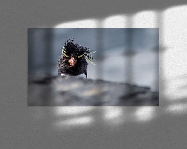 Sfeerimpressie: Angry Bird van Claudia van Zanten