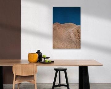 Woestijn van Lieke Roodbol