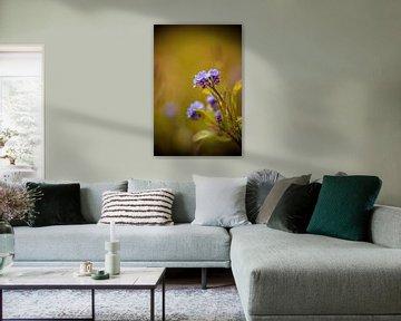 blauwe bloem tegen groene vage achtergrond von Margriet Hulsker