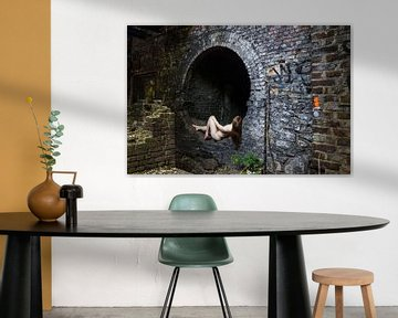 Through the Rabbit Hole von Sake van Pelt