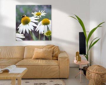 Flowers and bee von Christa Thieme-Krus