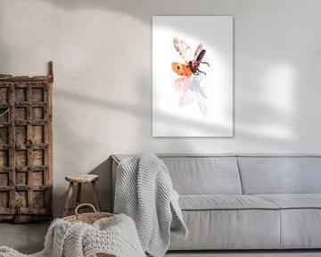 Lieveheersbeestje  sur Celina Dorrestein