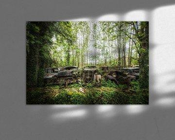 Oldtimer im Wald von Kelly van den Brande