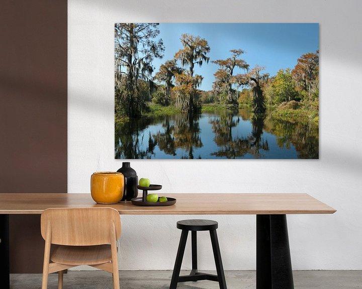 Sfeerimpressie: Wakulla Springs, Florida van Charlotte Bakker