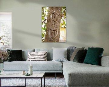 Baumstamm mit eingeritzten Initialen von Susanne Bauernfeind