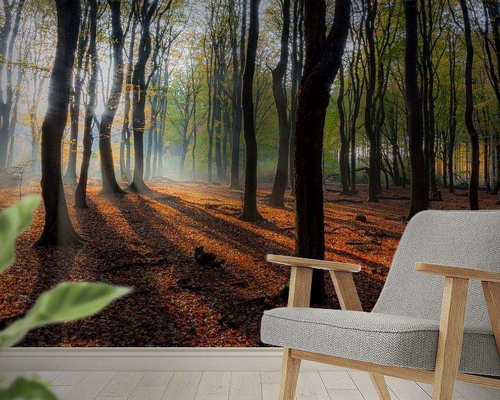 Sfeerimpressie behang: Speulderbos (Nederland) van Albert Mendelewski