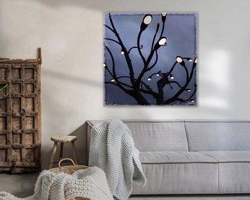 Lichtjesboom van Kuba Bartyński