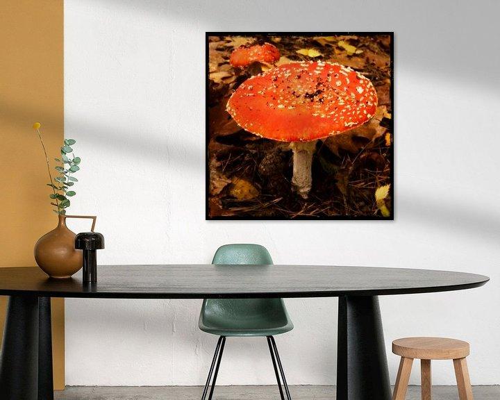 Sfeerimpressie: Paddestoel Rood met witte stippen van Kuba Bartyński