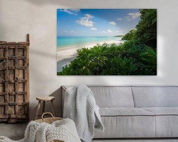 Robinson Crusoe van Joris Pannemans - Loris Photography