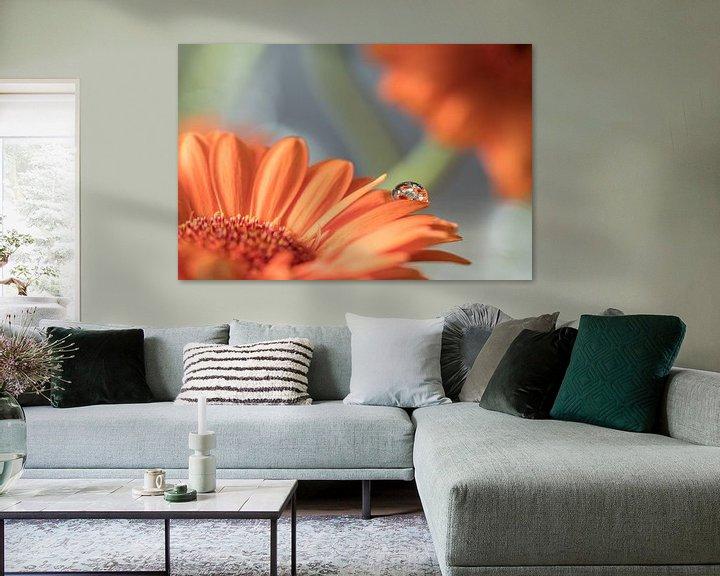Sfeerimpressie: Oranje Gerbera met waterdruppel van Marianne Twijnstra-Gerrits