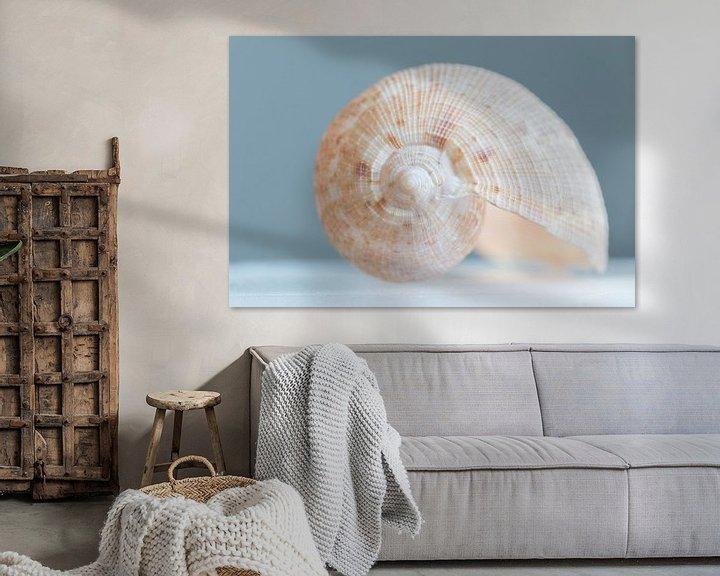 Sfeerimpressie: Schelp   stilleven in pastel van Marianne Twijnstra-Gerrits