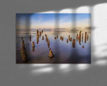 Wattenmeer, Friesland (Landschaft) von Edwin Kooren