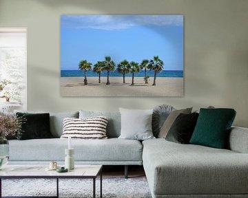 Palmen von Corinna Vollertsen