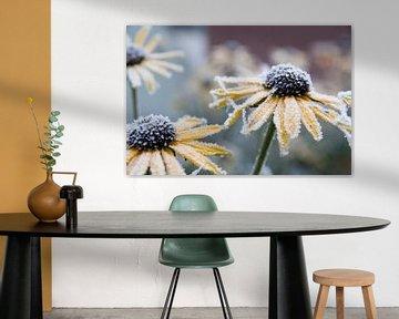 Bloemen in ijs von Lieke Roodbol