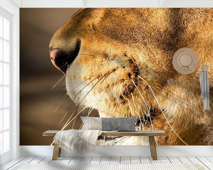 Sfeerimpressie behang: Leeuwin close-up van Marcel Alsemgeest