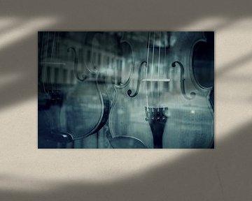 Besnaarde stad. Oftewel: de etalage van een vioolbouwer in Zutphen. von Anneriek de Jong