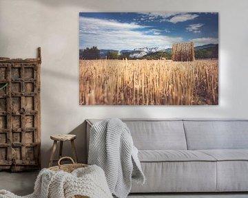 Berglandschap met hooi balen op het platteland van Fotografiecor .nl