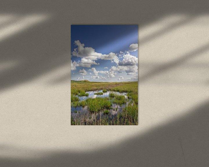 Sfeerimpressie: Texel duinlandschap / Texel dune landscape van Justin Sinner Pictures ( Fotograaf op Texel)
