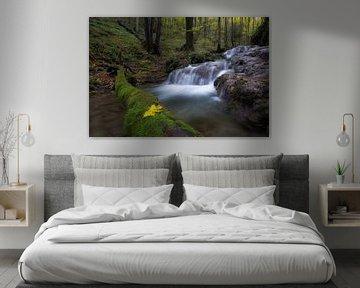 Wonderful waterfalls
