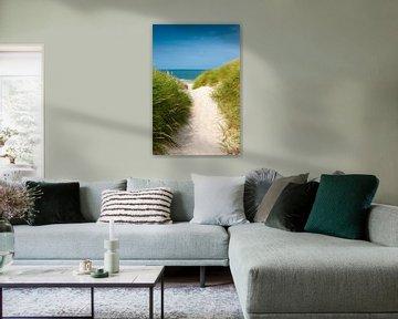 Noordzee duinpad van Reiner Würz / RWFotoArt