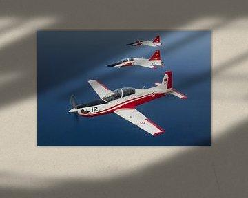 Turkse Luchtmacht KT-1 Woongbi & T-38 Talon van Dirk Jan de Ridder
