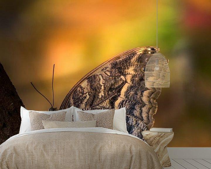 Sfeerimpressie behang: Caligo eurilochus - Uilvlinder - Texel van Texel360Fotografie Richard Heerschap
