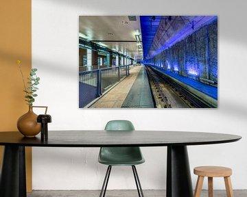 Antwerp CS - demi bleu sur Rene Siebring