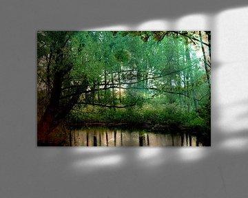 Bladbubbel in bos van Carin Klabbers