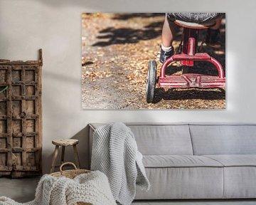 Kind auf Dreirad von Atelier Liesjes