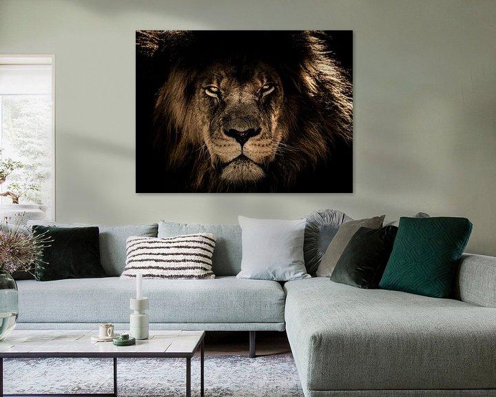 Impression: Tête de lion noir en gros plan alors qu'il vous regarde directement sur Atelier Liesjes