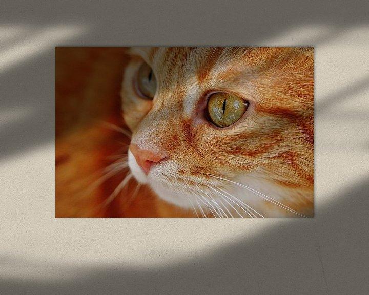 Beispiel: Nahaufnahme der Tasse rote Katze oder Kater von Atelier Liesjes