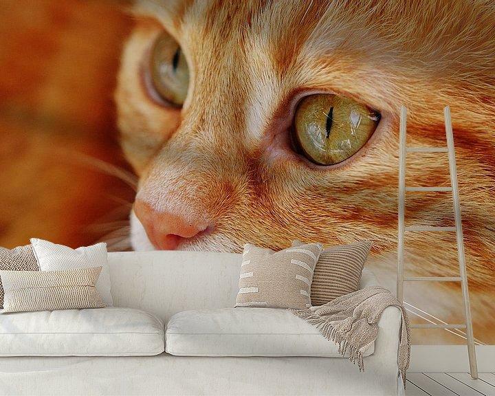 Beispiel fototapete: Nahaufnahme der Tasse rote Katze oder Kater von Atelier Liesjes
