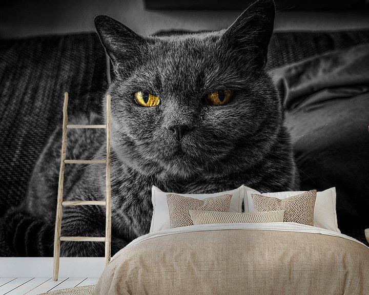 Sfeerimpressie behang: Grijze kat met gele ogen van Atelier Liesjes