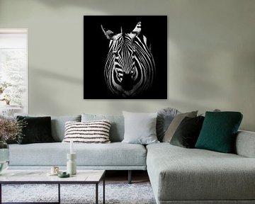 Zebra: Black and White Portrait von Elsje van Dyk