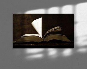 Altes Buch von Jana Behr