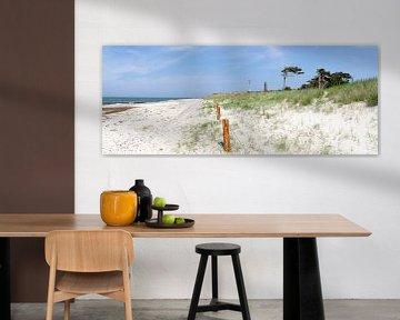 Strand am Darßer Ort von Leopold Brix