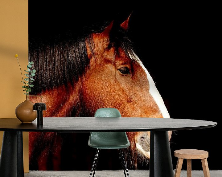 Sfeerimpressie behang: Hoofd van shire paard van Atelier Liesjes